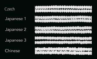 photo about Printable Seed Bead Size Chart called Blog site :: Information! :: Czech Seed Bead Dimension, Condition, Shade and