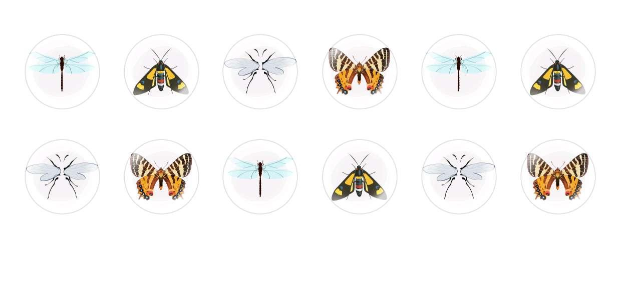 Handmade Round Domed Czech Glass Cabochons Insects for $6.89 from Czech Beads Exclusive